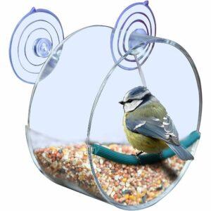 vogelfutterhaus-blaumeise-website